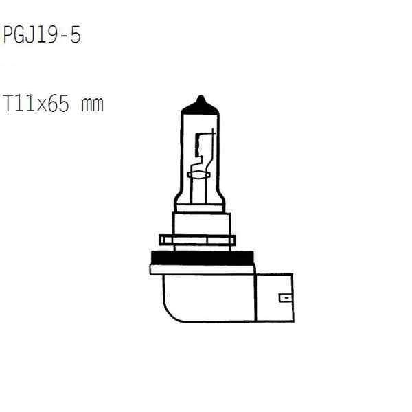 Žárovka 12V65W, H9, PGJ19-5 Ø=11x65mm